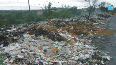 Photo of دریائے جہلم کے قریبی آبادی کے پاس قربانی کے جانوروں کی آلائشوں کے ڈھیر