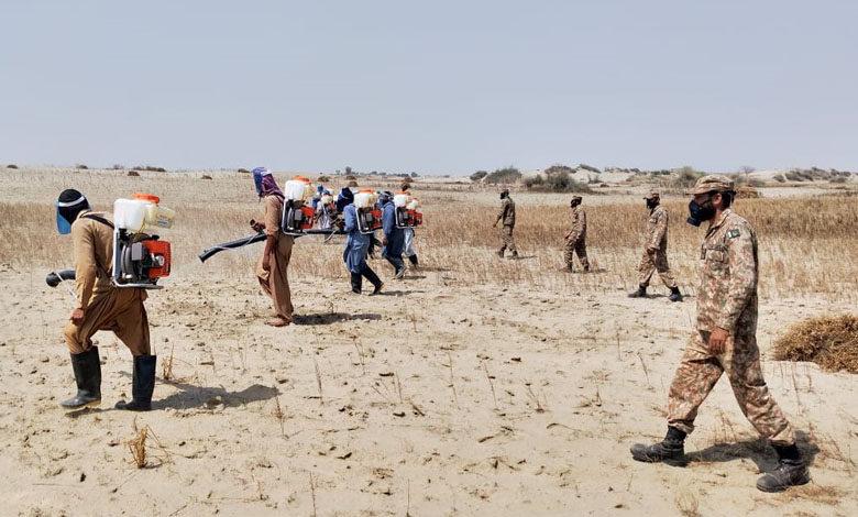Photo of پاک فوج نے ملک کے مختلف علاقوں میں ٹڈی دل سے بچاؤ مہم کا باقاعدہ آغاز کر دیا