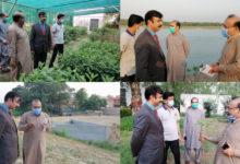 Photo of کلین اینڈ گرین پنجاب مہم کے تحت جہلم فلڈ بندپر 9200 نئے پودے لگائے گئے ہیں۔ راؤ پرویز اختر