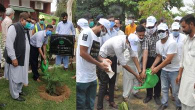 Photo of ڈپٹی کمشنر اور اے ڈی سی جی نے سول ہسپتال میں پودا لگا کر گرین سیلفی ڈے کا باقاعدہ افتتاح کر دیا