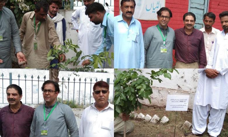 Photo of رورل ہیلتھ سنٹر ڈومیلی میں بھی پودا لگاکر شجر کاری مہم کا افتتاح کردیاگیا